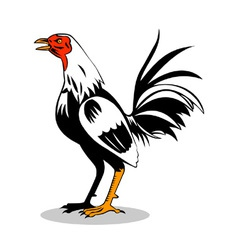 Rooster cockerel cock retro vector