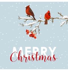 Merry Christmas Card - Winter Birds with Rowan vector image