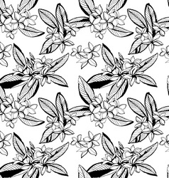 Tropical floral summer seamless pattern with vector