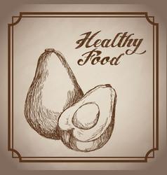 Hand drawn avocado healthy food fresh vector