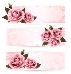 Set of holiday banners with pink beautiful roses vector image
