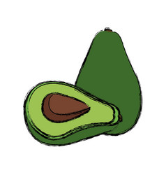 Avocado food fresh green harvest diet vector
