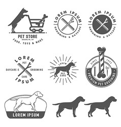 Retro pet care labels badges and design elements vector