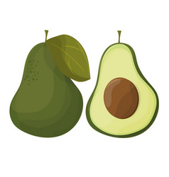 Cartoon avocados whole and cut avocado isolated vector