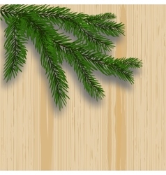 Green lush branch realistic fir trees and shade vector