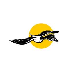 Mallard Duck Goose Flying vector image