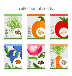 seeds collection of flowers and vegetables vector image