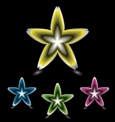 star flower icon black vector image