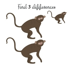 Find differences kids layout for game vervet ape vector
