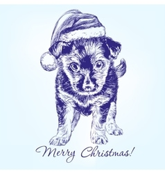 Christmas puppy in santa stocking hat hand drawn vector