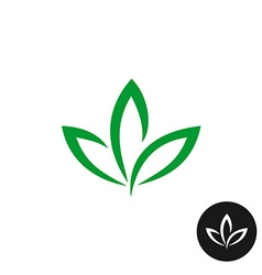 Three green leaf logo natural plant symbol vector