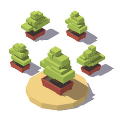 Isometric bonsai in a pot plant vector