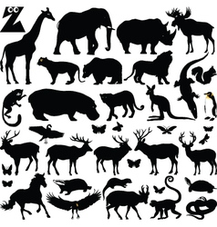 safari silhouettes vector image vector image