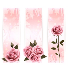 Three holiday banners with pink beautiful roses vector image