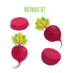 Beetroot set made in cartoon flat style vector