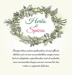natural herbal seasonings frame with text vector image vector image