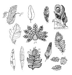 Doodle black and white monochrome graphic feathers vector