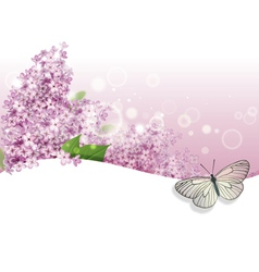 Greeting card with lilac and butterfly vector