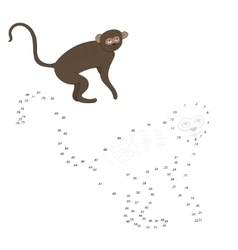 Connect the dots game vervet ape vector