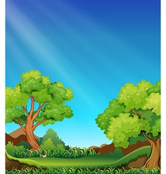 Forest and sky vector