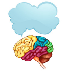 Human brain and speech bubble template vector