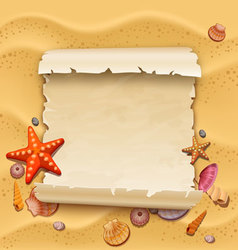 sea shells with sand as background vector image