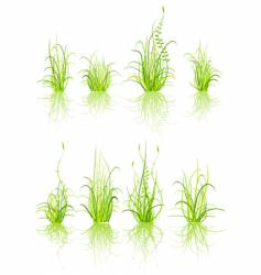 set of grass vector image vector image