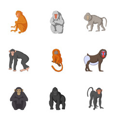 Types of orangutans icons set cartoon style vector