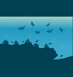 Silhouette of fish and stingray underwater vector