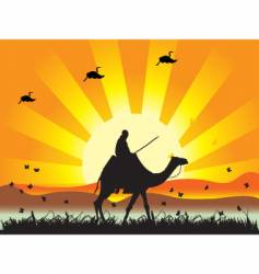 people on camel in desert vector image