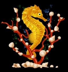 sea horse vector image