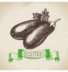 Hand drawn sketch eggplant vegetable eco food vector