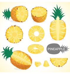 Fruit201509 set of pineapple in various styles vector