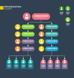 business organizational structure vector image vector image