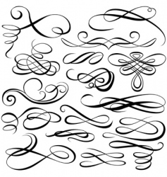 calligraphic elements vector image