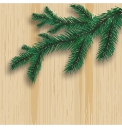 Green realistic fir tree branch and its shadow on vector