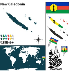 New Caledonia world map vector image