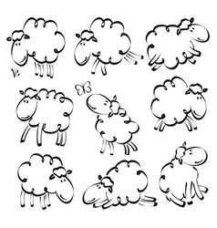 funny sheep drawing vector image vector image