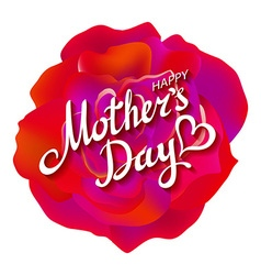 Happy Mothers Day Beautiful Blooming Red Rose vector image vector image