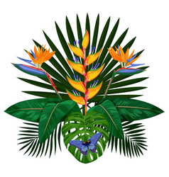 tropical bouquet composition vector image vector image