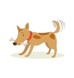 Brown pet dog carrying bone in teeth animal vector