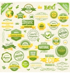 Collection organic food eco bio labels vector