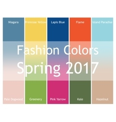 Blurred fashion infographic with trendy colors of vector