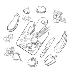 Cooking a vegetable salad sketch icons vector