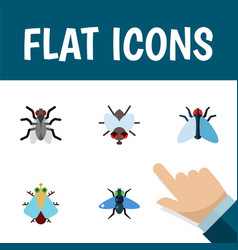 Flat icon fly set of gnat housefly buzz and vector