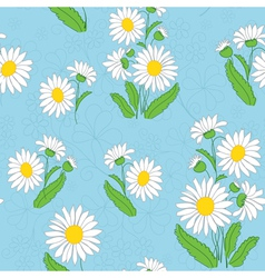 floral light blue pattern with chamomiles vector image