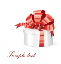 gift vector image vector image