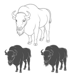 set of black and white images with a bison vector image vector image