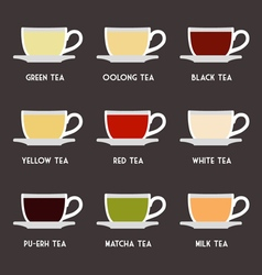 Tea Types Flat Design Infographics vector image