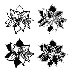 Flowers amarylis set 1 vector